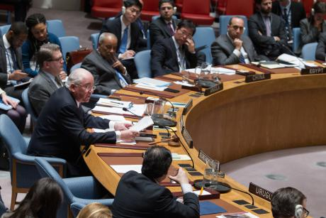 Security Council considers situation in Somalia, Feb 2016. © UN